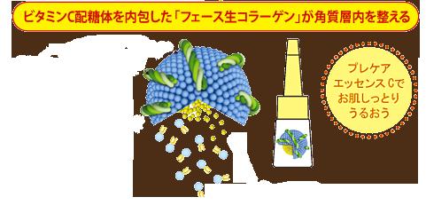 ビタミンC配糖体が体が内包した「フェース生コラーゲン」